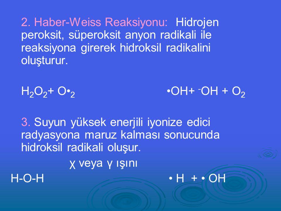 2. Haber-Weiss Reaksiyonu: Hidrojen peroksit, süperoksit anyon radikali ile reaksiyona girerek hidroksil radikalini oluşturur.