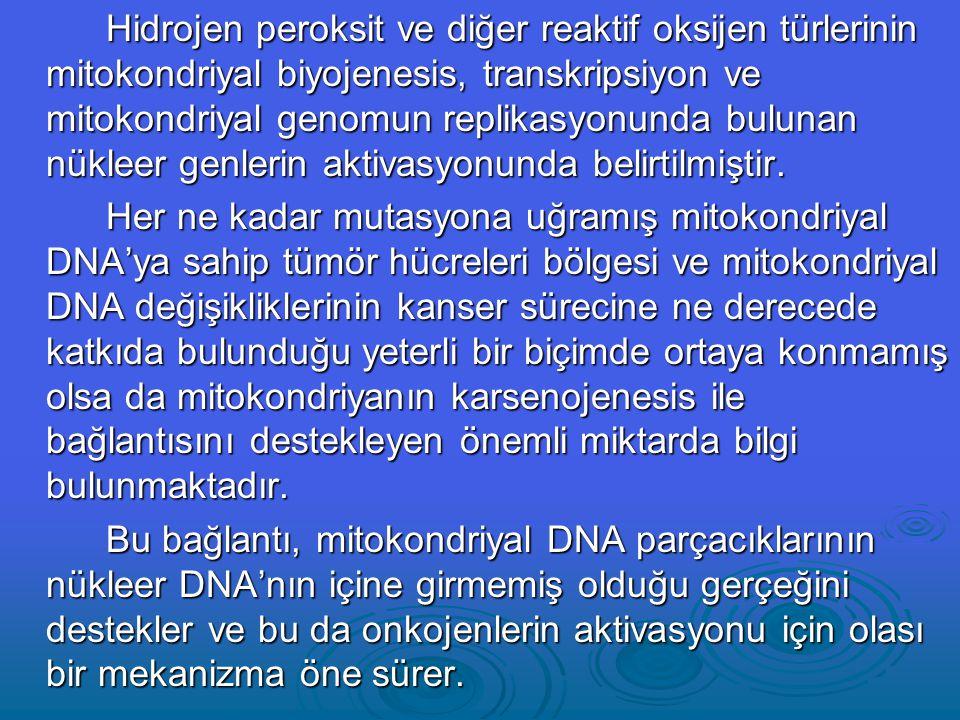 Hidrojen peroksit ve diğer reaktif oksijen türlerinin mitokondriyal biyojenesis, transkripsiyon ve mitokondriyal genomun replikasyonunda bulunan nükleer genlerin aktivasyonunda belirtilmiştir.