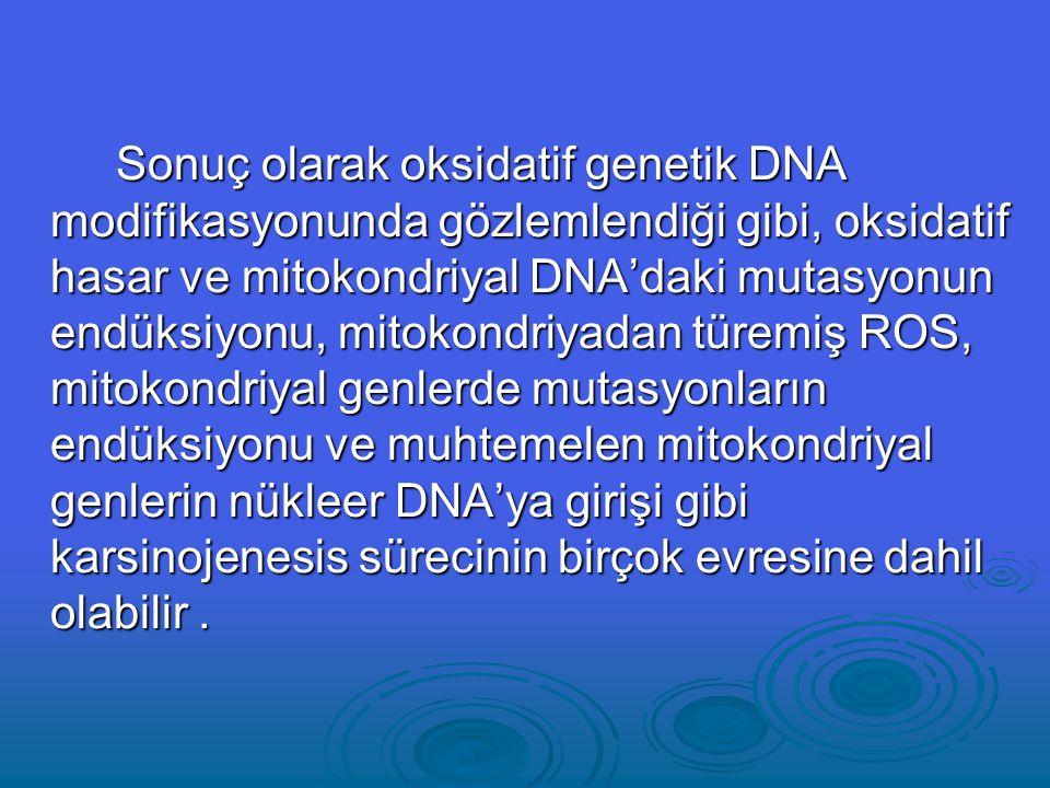 Sonuç olarak oksidatif genetik DNA modifikasyonunda gözlemlendiği gibi, oksidatif hasar ve mitokondriyal DNA'daki mutasyonun endüksiyonu, mitokondriyadan türemiş ROS, mitokondriyal genlerde mutasyonların endüksiyonu ve muhtemelen mitokondriyal genlerin nükleer DNA'ya girişi gibi karsinojenesis sürecinin birçok evresine dahil olabilir .