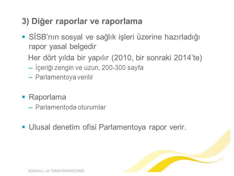 3) Diğer raporlar ve raporlama