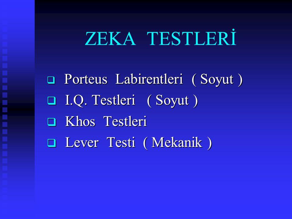 ZEKA TESTLERİ I.Q. Testleri ( Soyut ) Khos Testleri
