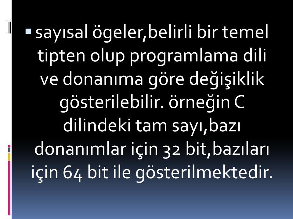 sayısal ögeler,belirli bir temel tipten olup programlama dili ve donanıma göre değişiklik gösterilebilir.