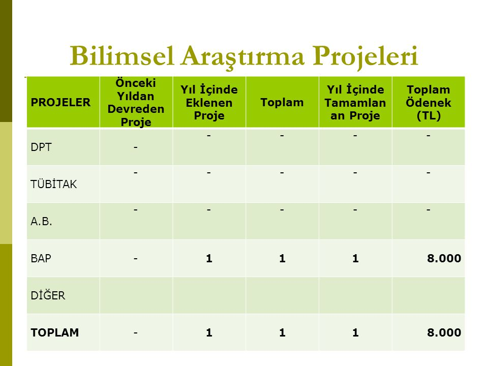 Bilimsel Araştırma Projeleri