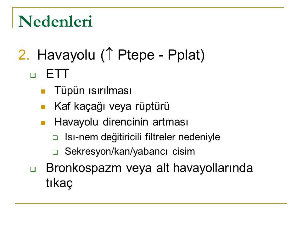 Nedenleri Havayolu ( Ptepe - Pplat) ETT