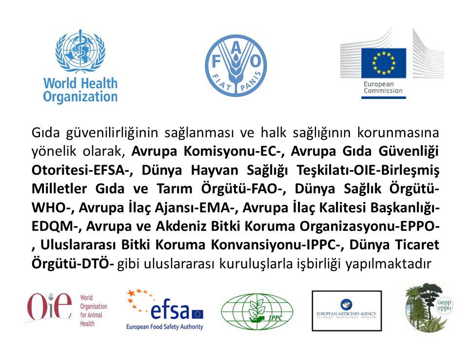 Gıda güvenilirliğinin sağlanması ve halk sağlığının korunmasına yönelik olarak, Avrupa Komisyonu-EC-, Avrupa Gıda Güvenliği Otoritesi-EFSA-, Dünya Hayvan Sağlığı Teşkilatı-OIE-Birleşmiş Milletler Gıda ve Tarım Örgütü-FAO-, Dünya Sağlık Örgütü-WHO-, Avrupa İlaç Ajansı-EMA-, Avrupa İlaç Kalitesi Başkanlığı-EDQM-, Avrupa ve Akdeniz Bitki Koruma Organizasyonu-EPPO-, Uluslararası Bitki Koruma Konvansiyonu-IPPC-, Dünya Ticaret Örgütü-DTÖ- gibi uluslararası kuruluşlarla işbirliği yapılmaktadır