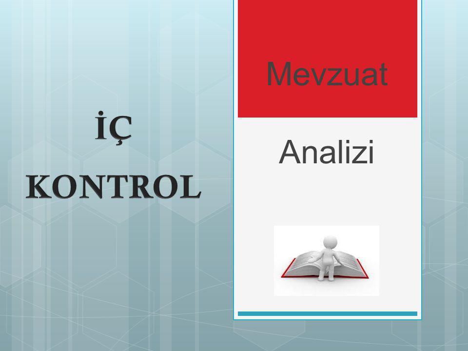 Mevzuat Analizi İÇ KONTROL