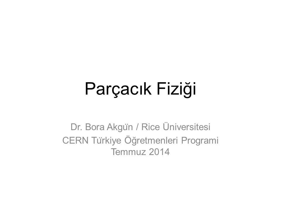 Parçacık Fiziği Dr. Bora Akgün / Rice Üniversitesi