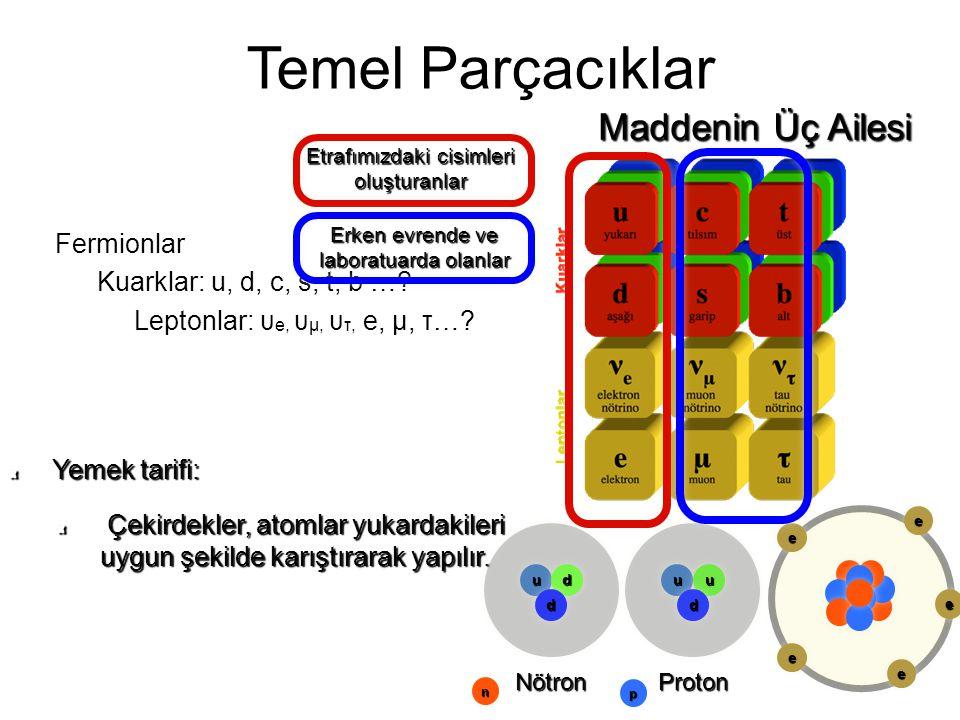 Temel Parçacıklar Maddenin Üç Ailesi Fermionlar