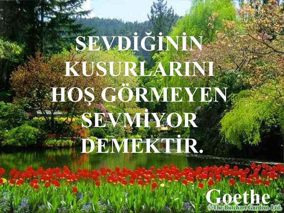 SEVDİĞİNİN KUSURLARINI HOŞ GÖRMEYEN SEVMİYOR DEMEKTİR. Goethe