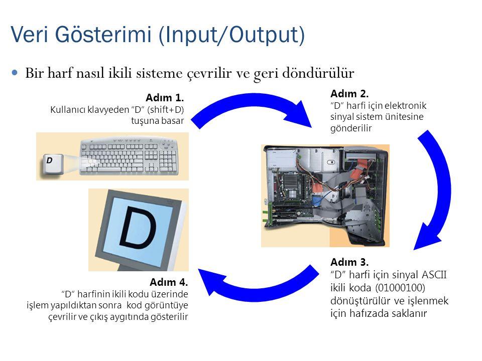 Veri Gösterimi (Input/Output)