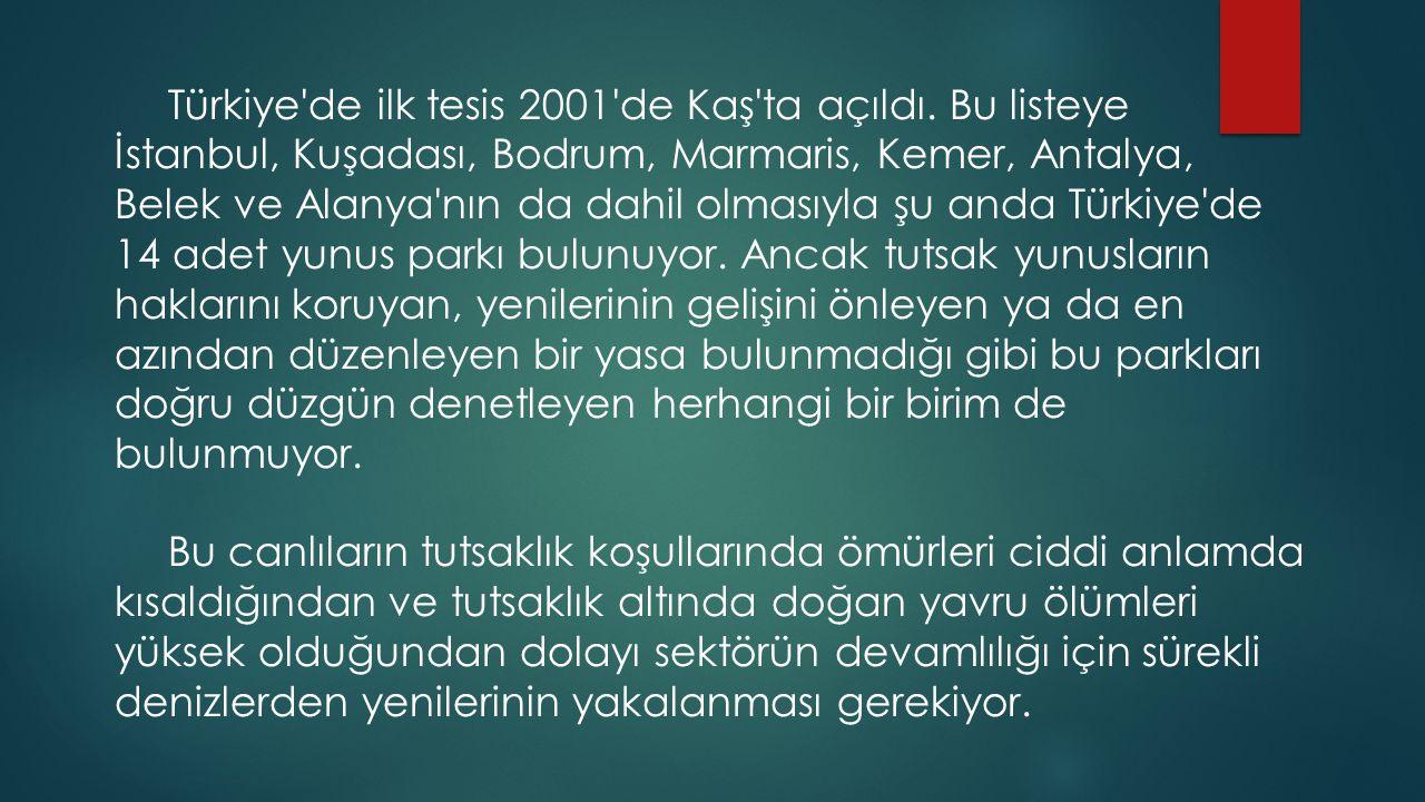 Türkiye de ilk tesis 2001 de Kaş ta açıldı