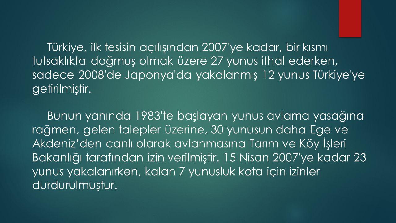 Türkiye, ilk tesisin açılışından 2007 ye kadar, bir kısmı tutsaklıkta doğmuş olmak üzere 27 yunus ithal ederken, sadece 2008 de Japonya da yakalanmış 12 yunus Türkiye ye getirilmiştir.