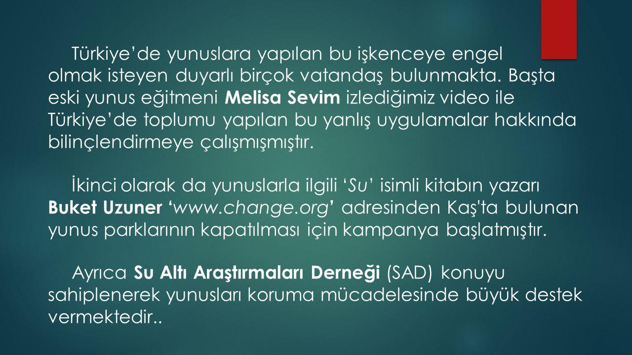 Türkiye'de yunuslara yapılan bu işkenceye engel olmak isteyen duyarlı birçok vatandaş bulunmakta.