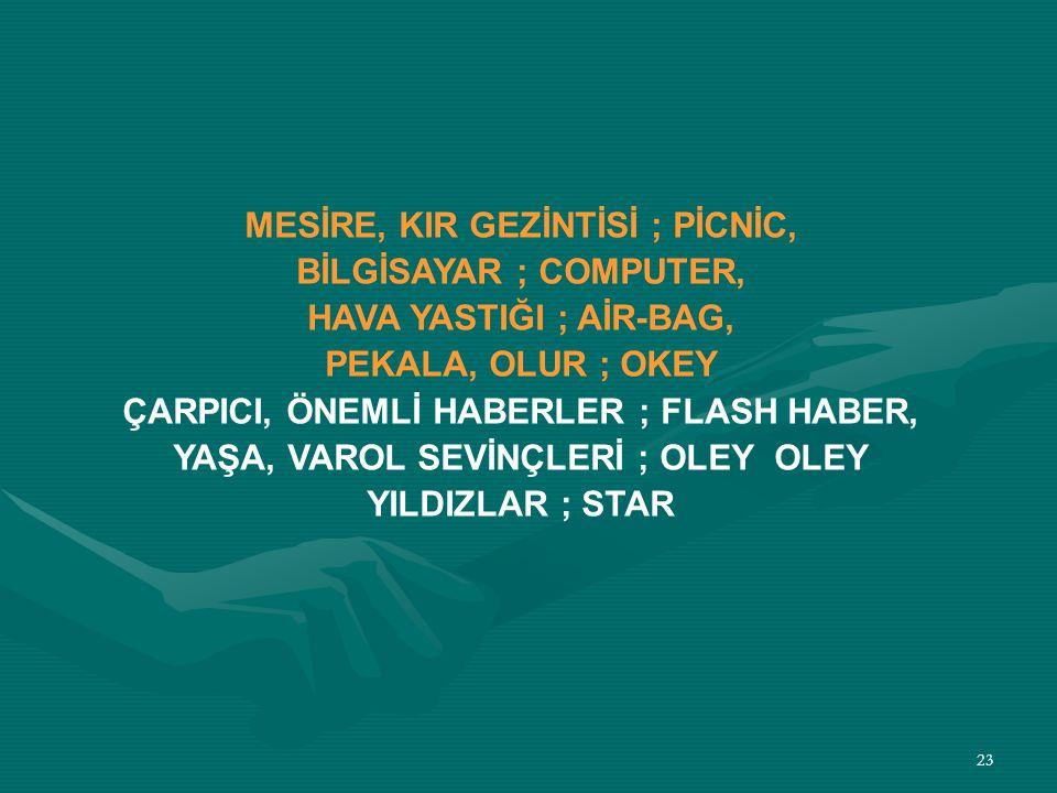MESİRE, KIR GEZİNTİSİ ; PİCNİC, BİLGİSAYAR ; COMPUTER,