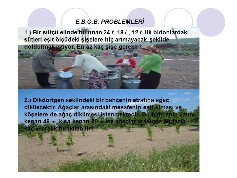 E.B.O.B. PROBLEMLERİ