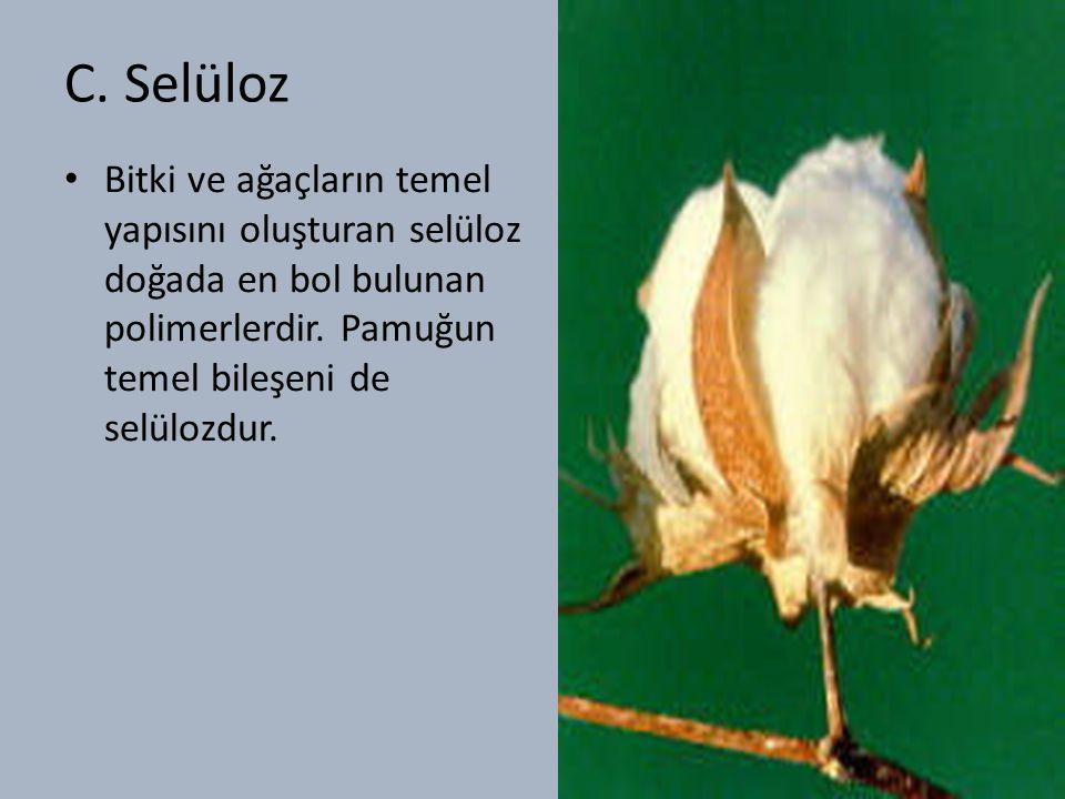 C. Selüloz Bitki ve ağaçların temel yapısını oluşturan selüloz doğada en bol bulunan polimerlerdir.