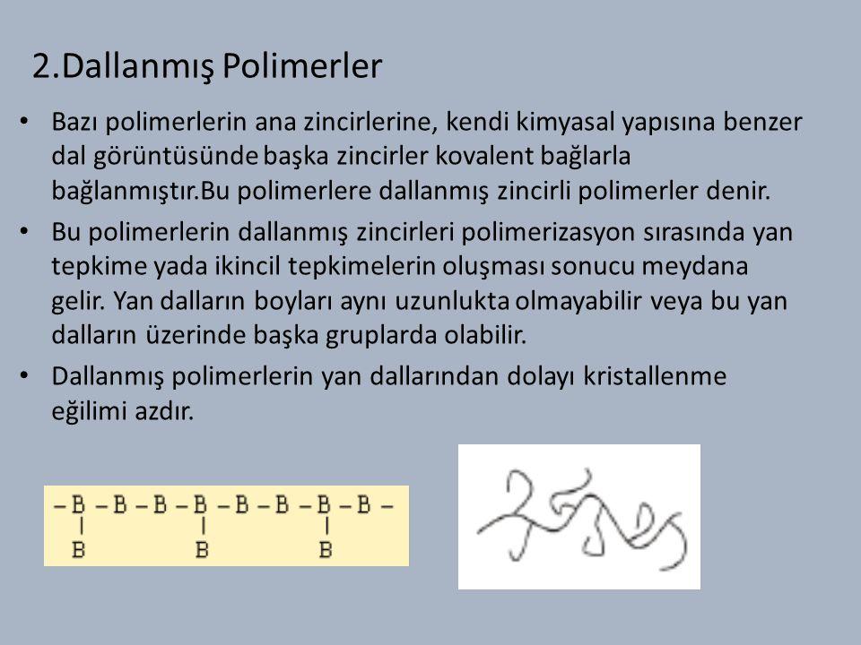 2.Dallanmış Polimerler