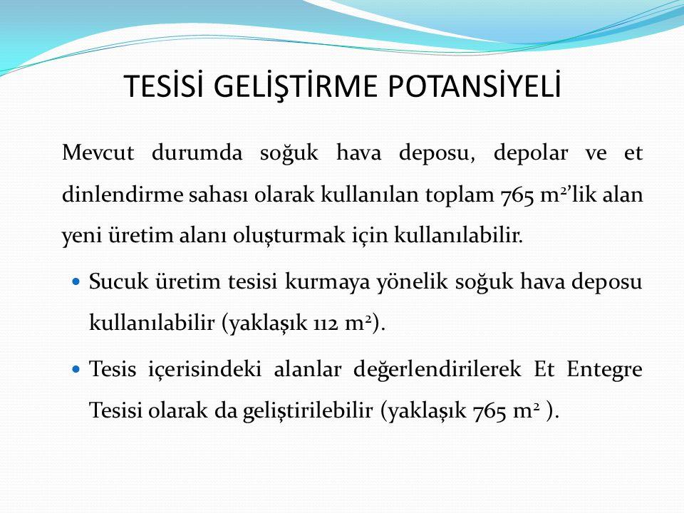 TESİSİ GELİŞTİRME POTANSİYELİ
