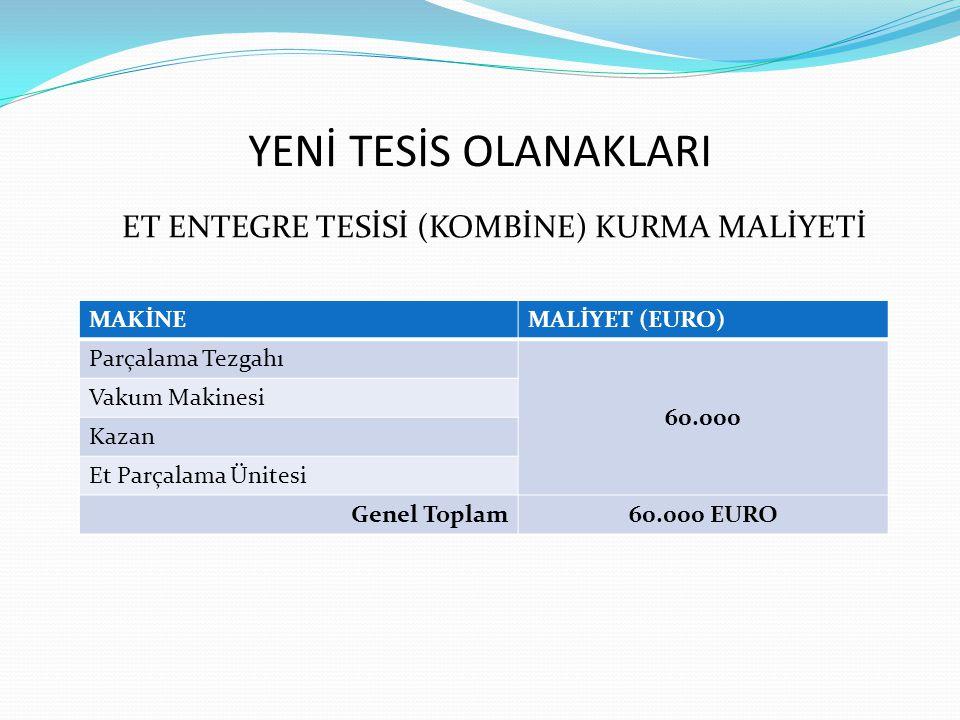 ET ENTEGRE TESİSİ (KOMBİNE) KURMA MALİYETİ