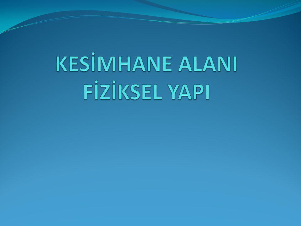 KESİMHANE ALANI FİZİKSEL YAPI
