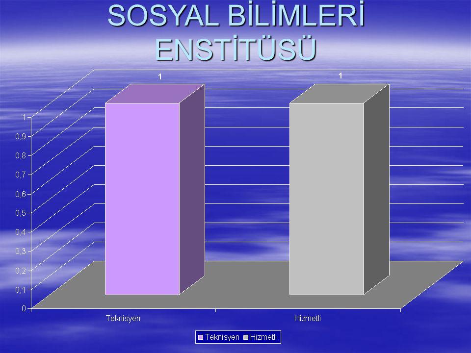 SOSYAL BİLİMLERİ ENSTİTÜSÜ