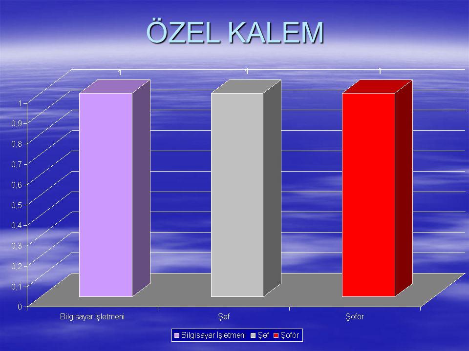 ÖZEL KALEM