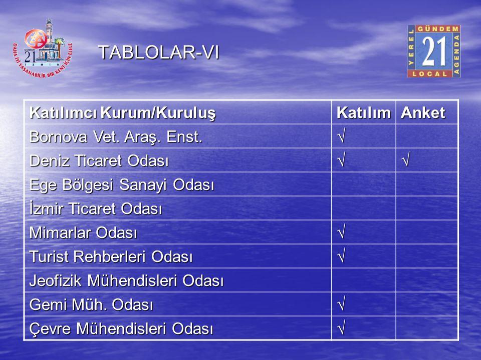 TABLOLAR-VI Katılımcı Kurum/Kuruluş Katılım Anket