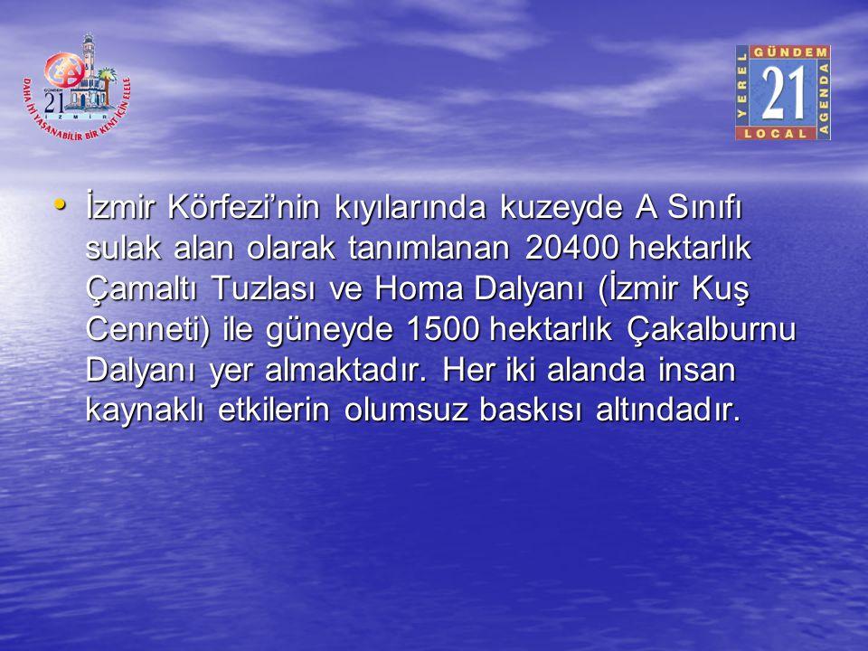 İzmir Körfezi'nin kıyılarında kuzeyde A Sınıfı sulak alan olarak tanımlanan 20400 hektarlık Çamaltı Tuzlası ve Homa Dalyanı (İzmir Kuş Cenneti) ile güneyde 1500 hektarlık Çakalburnu Dalyanı yer almaktadır.