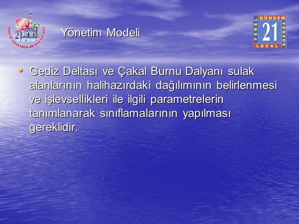 Yönetim Modeli