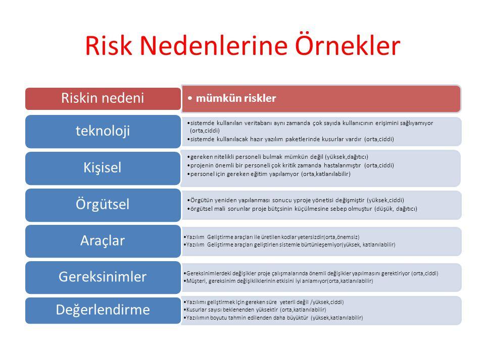 Risk Nedenlerine Örnekler