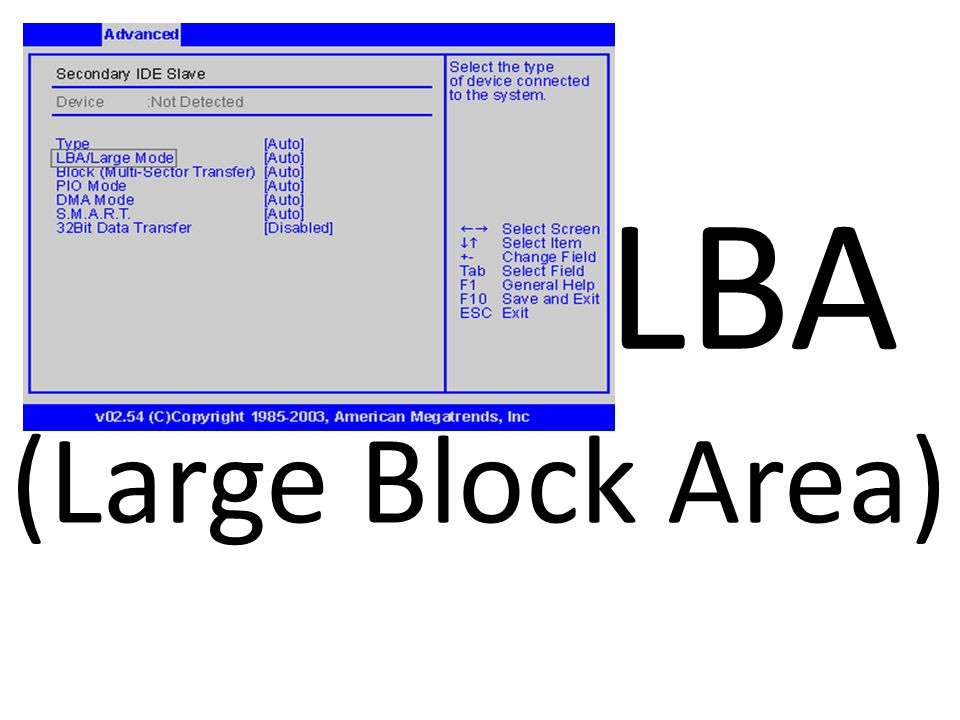 LBA (Large Block Area)