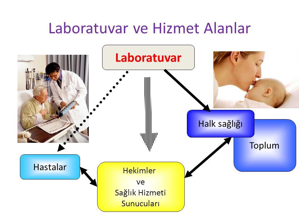 Laboratuvar ve Hizmet Alanlar