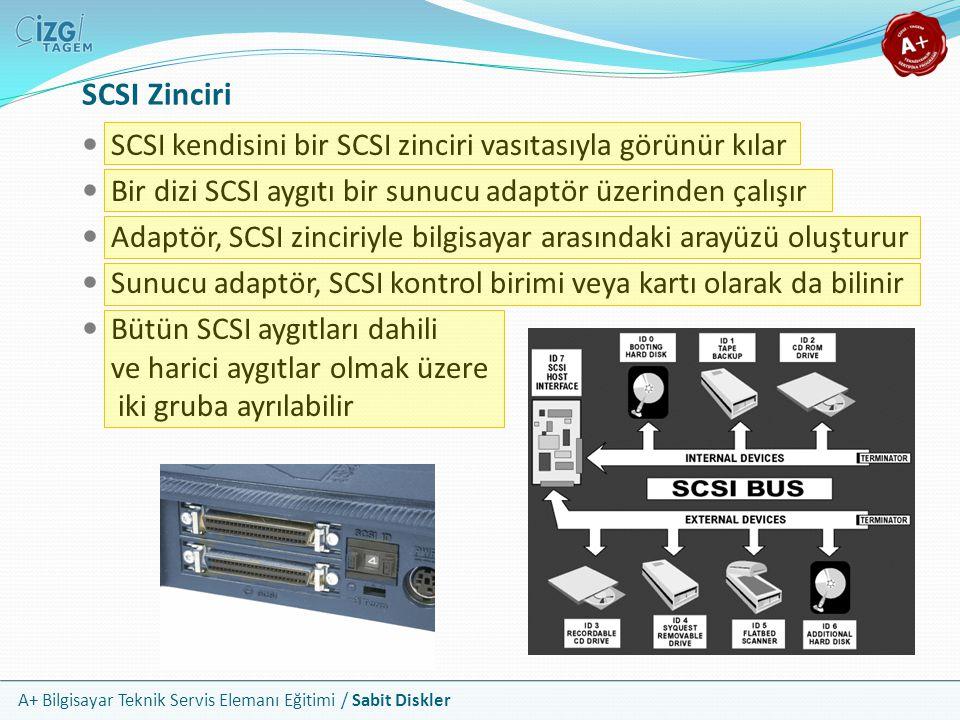 SCSI Zinciri SCSI kendisini bir SCSI zinciri vasıtasıyla görünür kılar