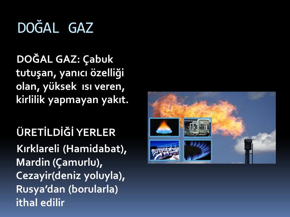 DOĞAL GAZ DOĞAL GAZ: Çabuk tutuşan, yanıcı özelliği olan, yüksek ısı veren, kirlilik yapmayan yakıt.