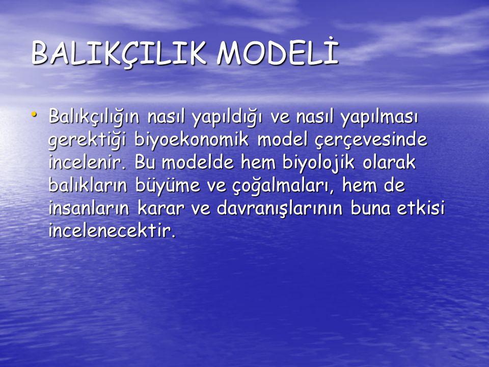 BALIKÇILIK MODELİ