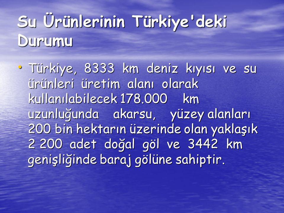 Su Ürünlerinin Türkiye deki Durumu
