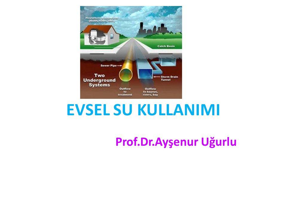 EVSEL SU KULLANIMI Prof.Dr.Ayşenur Uğurlu