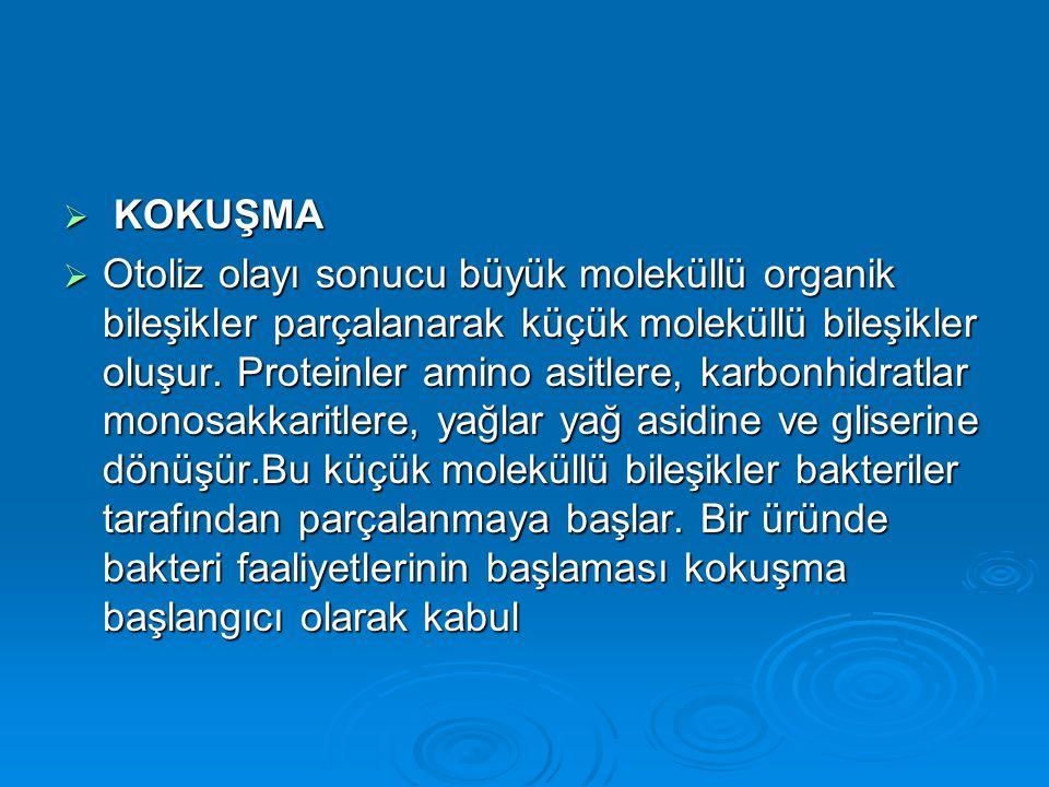 KOKUŞMA