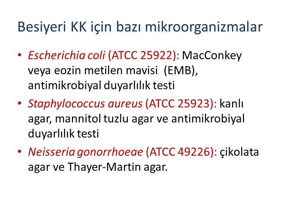 Besiyeri KK için bazı mikroorganizmalar
