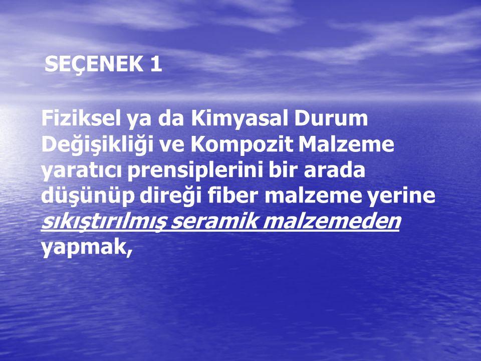 SEÇENEK 1