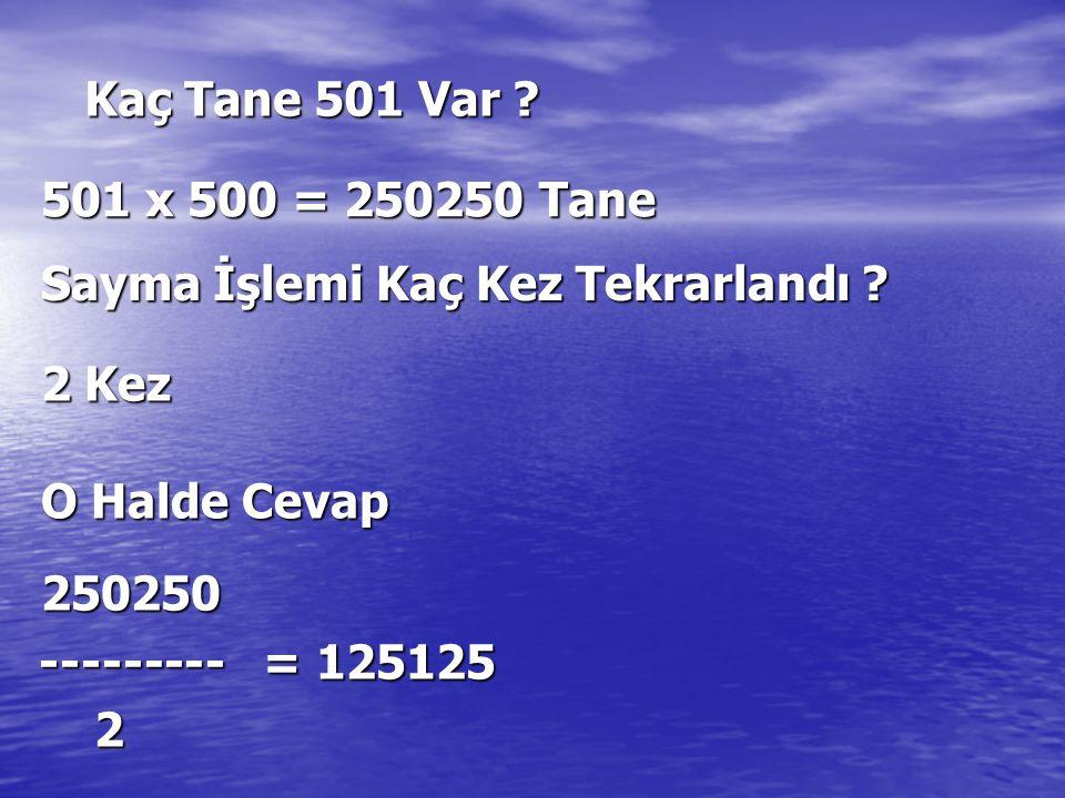 Kaç Tane 501 Var 501 x 500 = 250250 Tane. Sayma İşlemi Kaç Kez Tekrarlandı 2 Kez. O Halde Cevap.
