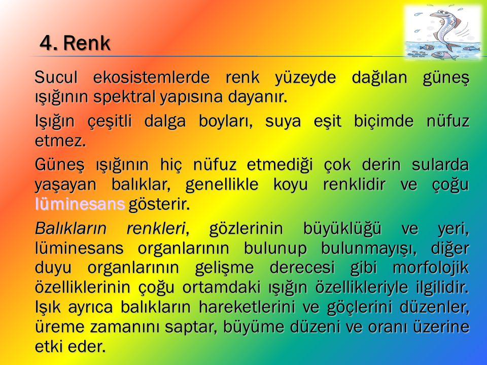 4. Renk