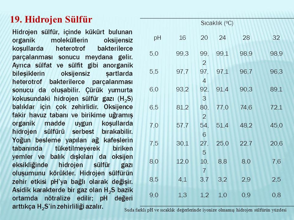 19. Hidrojen Sülfür Sıcaklık (oC) pH. 16. 20. 24. 28. 32. 5,0. 99,3. 99, 2. 99,1. 98,9. 5,5.