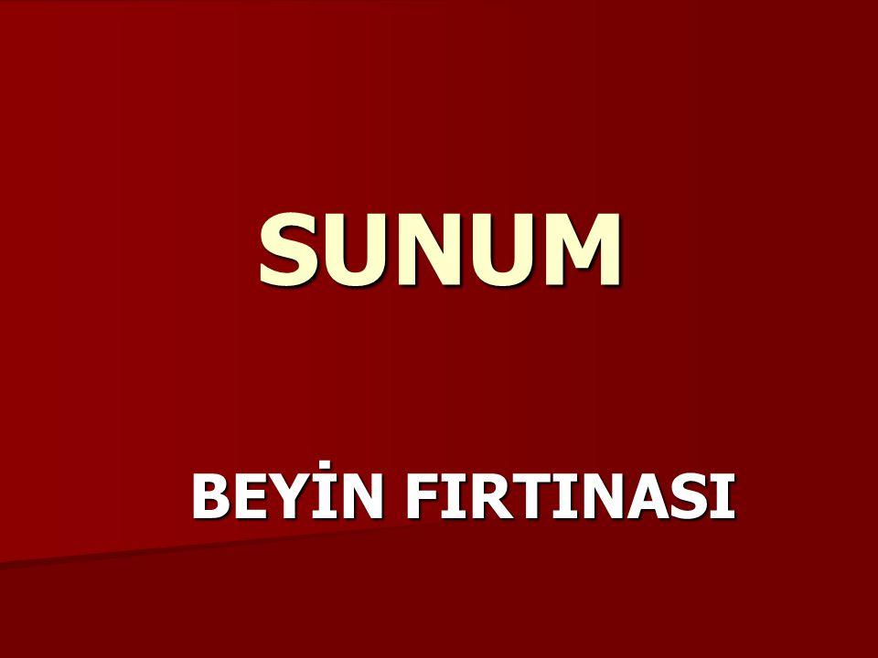 SUNUM BEYİN FIRTINASI