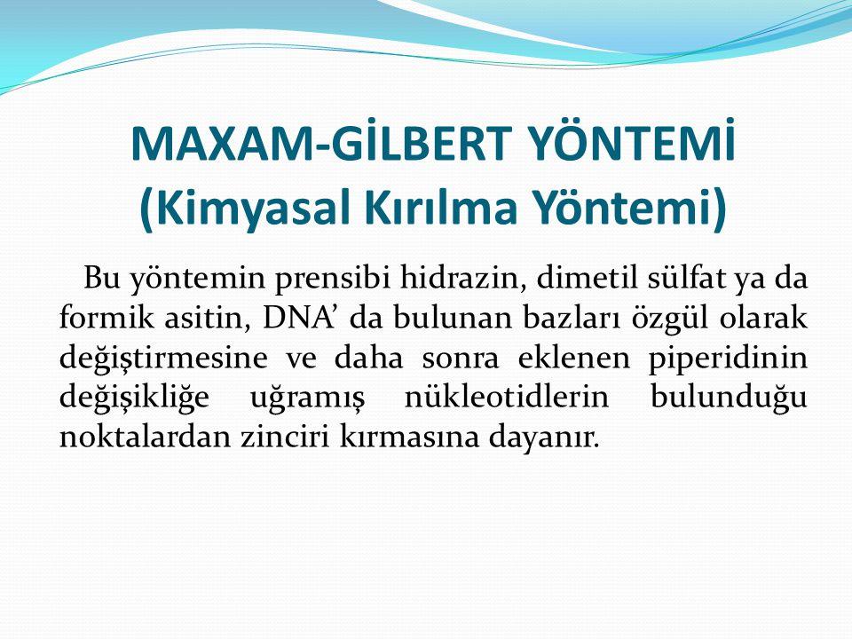 MAXAM-GİLBERT YÖNTEMİ (Kimyasal Kırılma Yöntemi)