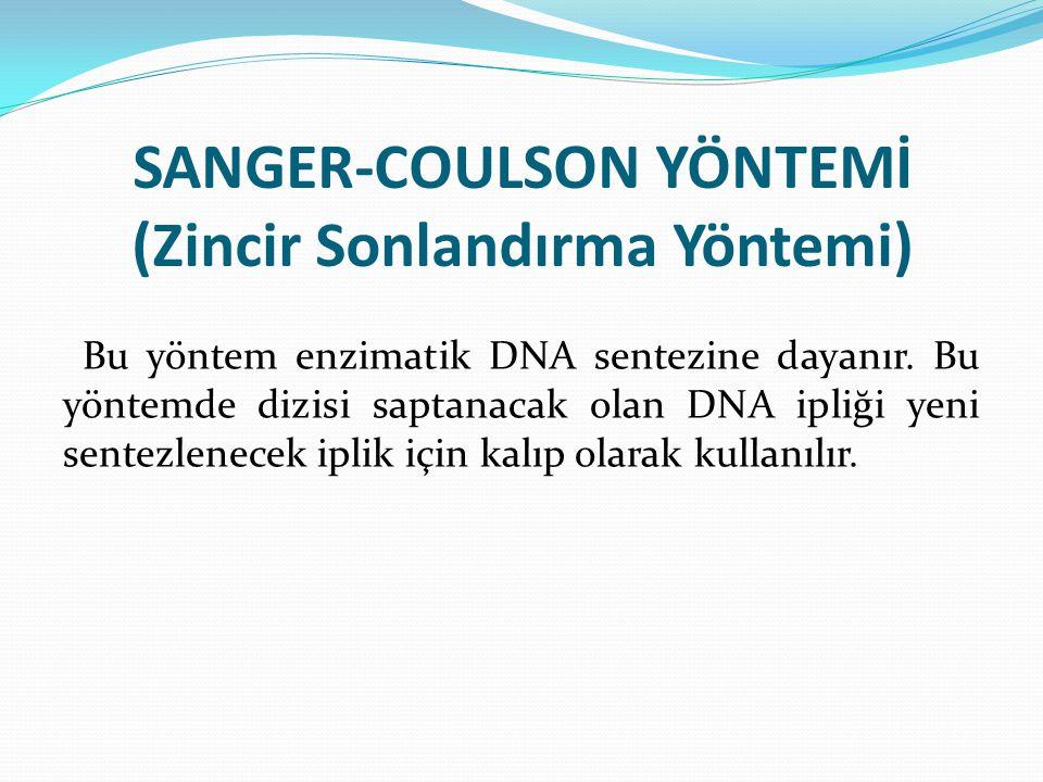 SANGER-COULSON YÖNTEMİ (Zincir Sonlandırma Yöntemi)
