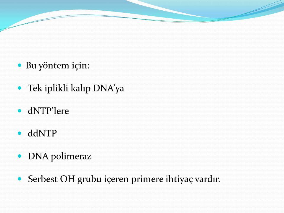 Bu yöntem için: Tek iplikli kalıp DNA'ya. dNTP'lere.