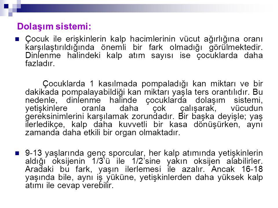 Dolaşım sistemi: