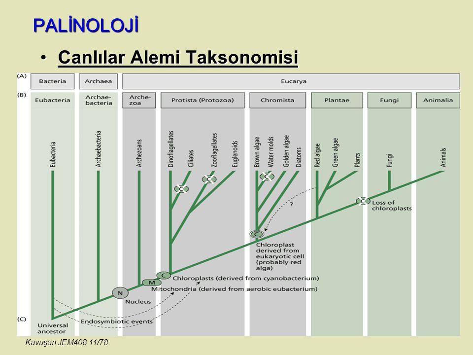 Canlılar Alemi Taksonomisi