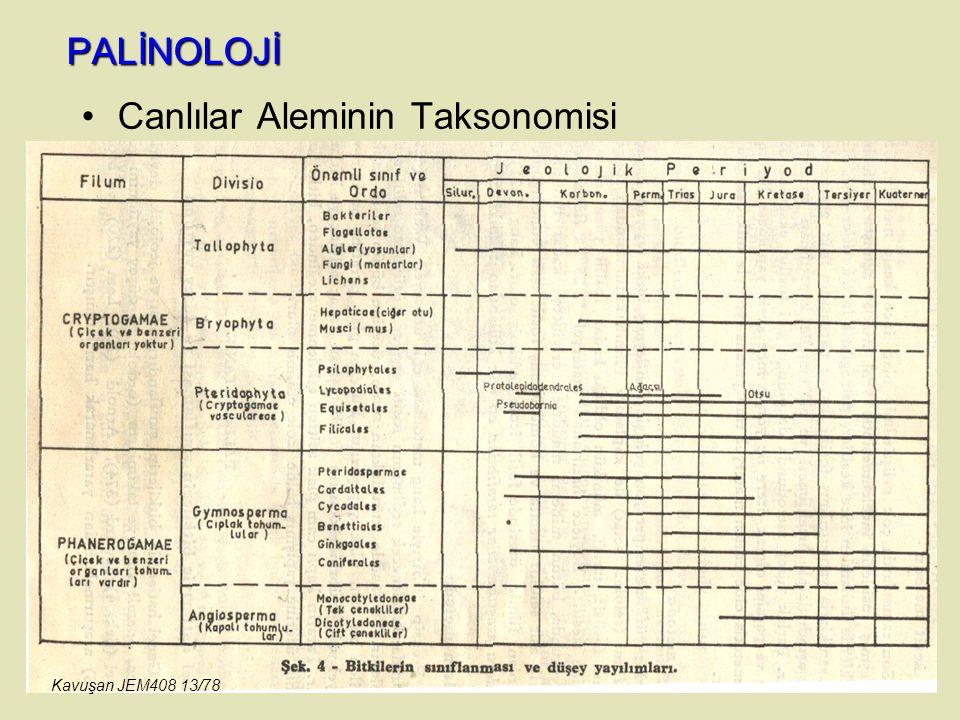 Canlılar Aleminin Taksonomisi